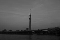 PS1R3909 (Zengame) Tags: asakusa dcs1r lmount lmonochromed lumixs lumixs24105mm lumixs24105mmf4 lumixs24105mmf4macroois lumixs1r lumix lマウント lモノクロームd panasonic sr24105 s1r sumidariver sumidagawa architecture bw japan landmark monochrome river sky skytree tokyo tokyoskytree tower スカイツリー パナソニック モノクロ モノクローム ルミックス 日本 東京 東京スカイツリー 浅草 空 隅田川 tokyoprefecture