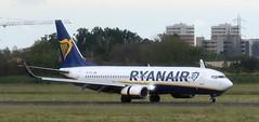 EI-FTL Boeing 737-800 Ryanair BLQ 150519 (kitmasterbloke) Tags: blq bologna marconi italy aviation airliner aircraft outdoor transport