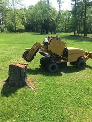 A5880C3A-005E-475C-A59C-703DC2AFBC5B (Lakeview Stump Grinding) Tags: lakeview columbia strongsville stump grinding ohio station north royalton cleveland berea olmsted falls landscaping bay village northeast service grind removal