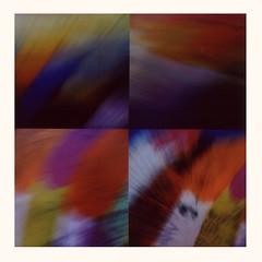 prfct strm (rustman) Tags: abstract color film fuji fujifilm fujifilmsq10 hybrid instantfun instant instantfilm instax integral motion movement roidweek roidweekspring2019 roidweek2019 square sq10 texaslife