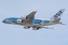 All Nippon Airways, Airbus A380-800, JA381A 'Inspiration of Japan' (masak2_ukon) Tags: narita 成田 airplanes