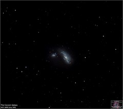 The Cocoon Galaxy System ARP 269 (The Dark Side Observatory) Tags: tomwildoner night sky space outerspace meade lx90 telescope astronomy astronomer science canon deepsky deepspace weatherly pennsylvania observatory darksideobservatory tdsobservatory earthskyscience carboncounty meadetelescope canon6d meadeinstruments meadeinstrument arp269 arp cocoongalaxy ngc4490 ngc4485 canesvenatici