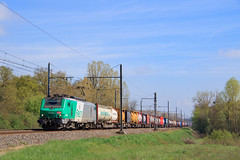 43109-Thionville-)Cerbère (AziroxY) Tags: trains trainspotting train photo photographie plm photosncf prima bb27101 bb27000 fret fretsncf soleil combiné combi