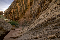 Strange convergence of swooping sedimentary lines and dribbling colors (Jeff Mitton) Tags: desertvarnish spiritcanyon sedimentarylines earthnaturelife wondersofnature landscape coloradoplateau sanrafaelswell utah