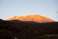 Kibo view, Highest point of Kilimanjaro NP at sunset, Tanzania (Amdelsur) Tags: parcdukilimandjaro continentsetpays tanzanie afrique africa kilimanjaronationalpark tz tza tanzania kilimandjaro
