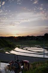20190515A73_8145 (Gansan00) Tags: ilce7m3 α7ⅲ sony zeiss japan 山口県 yamaguchi 日本 landscape snaps ブラリ旅 中須棚田 棚田 shunan nature 5月 fe35mmf28 夕景 夕陽 sunset