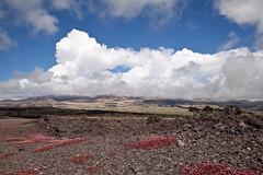 Mauna Kea Cloaked in Clouds, Saddle Road, Hawaii (Big Island) (Roger Gerbig) Tags: bigisland hawaii island rogergerbig canoneos5dmarkii canonef24105mmf4lisusm saddleroad 2826