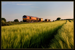 THE BARLEY FIELD (OLD GIT WITH A CAMERA) Tags: