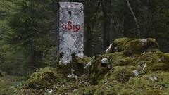 Borne Frontière Franco/Suisse (WoPeR 25 ☘️) Tags: borne bornefrontière 1819 sui france francia frankreich franchecomté forêt francosuisse bois mousse sony frontière
