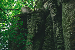 KRIS9664 (Chris.Heart) Tags: kéktúra túra hiking hungary nature balaton természet