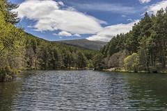 Tras el Pradillo (lebeauserge.es) Tags: rascafría madrid españa naturaleza árbol río agua cielo nubes