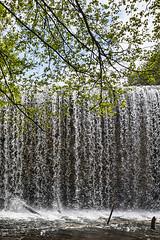 Frente a la presa (2) (lebeauserge.es) Tags: rascafría madrid españa naturaleza árbol río agua catarata cascada