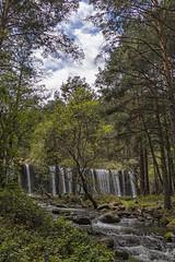 A pie del río de la Angostura (lebeauserge.es) Tags: rascafría madrid españa naturaleza árbol río agua catarata cascada cielo nubes