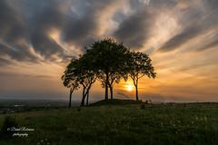 DSC02994 (davyskin46) Tags: sony slt sonydt1650f28ssm northeastofengland sunset copthill houghtonlespring a77ii burialmound