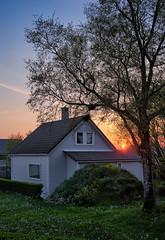 Early spring sunset (Vest der ute) Tags: xt20 norway rogaland haugesund trees grass foliage house sky sunset evening fav25
