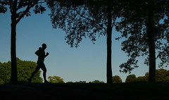 The Runner ..... (+Pattycake+) Tags: ©patriciawilden2019 runner athlete silhouette lowpov park leisure trees candid unposed opportunistshot