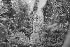 The grave of Philip Wirth (IanAWood) Tags: abneyparkcemetery bringoutyourdead cemeteryclub cemeteryparks citiesofthedead friendsofabneypark headstonehunting lbofhackney londonscemeteries londonsdead londonsgraveyards londonsmagnificent7victoriancemeteries londonsvictorianvalhalla nikkorafs58mmf14g nikondf stokenewington taphophile walkingamongthedead walkingwithmynikon