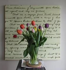 Tulips and The Captain's Letter (Robert C. Abraham) Tags: tulips atlanticcanada atlantic sailingvessels sailing sailingships ocean 1929 schooner letter flowers writing canada novascotia vase schoonerroseannebelliveau canvasart scannedletter cutflowers