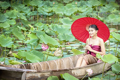 Thai female on a wooden boat collecting lotus flowers. Asian women sitting on wooden boats to collect lotus. Beautiful girl wearing traditional Thai dress hand holding a red umbrella. (pomp_jaideaw) Tags: lotus wooden women asian boat girl sitting beautiful traditional dress beauty thai wearing red people female portrait water flower outdoor park nature green woman happy background cute natural travel model collecting pink lady asia tradition thailand young person summer pretty fashion smile leaf spring garden culture holding lake pond hands