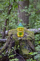 Моя советская игрушка (russian-photographer.ru) Tags: ussr vintage vintagetoy gnome fairytale toy bright green nature ссср винтаж винтажнаяигрушка гном сказка игрушка ярко зеленый природа советскаярезиноваяигрушка лесовичок лесовик