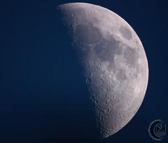47.5% First Quarter Daytime Moon [2019.05.11] (1CM69) Tags: 1cm69 750d as3 astrophotography autostakkert bishnym bishopsnympton byeos canon canon750d celestron celestroncpc925 cpc925 exiftool geosetter kjevans luna lunar lune moon photoshop pipp starizonamicrotouchautofocuser england unitedkingdom