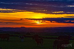 Edinburgh Sunrise 25 Sept 2018 00013.jpg (JamesPDeans.co.uk) Tags: pentlandhills forthemanwhohaseverything sunrise edinburgh gb greatbritain westlothian weather clouds unitedkingdom landscapeforwalls scotland britain printsforsale timeofday wwwjamespdeanscouk arthursseat jamespdeansphotography bathgatehills lothian europe uk digitaldownloadsforlicence