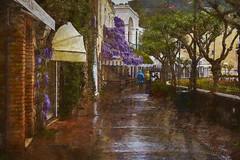 The Streets of Capri (WayneToTheMax) Tags: capri isle island italy wisteria rain reflection brick nikon d750 amalfi coast