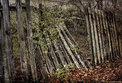 Grungy Fence on U.S. Route 11 south of Christiansburg Virginia (PhotosToArtByMike) Tags: christiansburgvirginia vacant closed christiansburg virginia va shenandoahvalley fence usroute11 southwesternvirginia montgomerycounty commercialrealestate