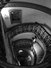 Descenso (jantoniojess) Tags: courtauld courtauldmuseum museocourtauld stairs staircase escaleras escalones escaleradecaracol escalerahelicoidal monocromático monochrome panasoniclumixtz20 blancoynegro blackandwhite londres london spiral espiral spiralstaircase perspective perspectiva