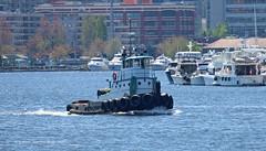 4566_Ruby VIII (lg evans Maritime Images) Tags: maritimeimages ©lgevans lgevans tugs rubyviii fvoceanfresh portofseattle lakeunion