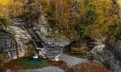 La Ripareta (sostingut) Tags: panorámica otoño pirineos añisclo d750 nikon tamron haida paisaje cascada cañón valle bosque selva colores soledad río agua árbol roca