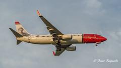 LN-NGJ   Boeing 737-800 - Norwegian Air Shuttle (Peter Beljaards) Tags: msn39021 cfm567 johnbauer boeing737800 norwegianairshuttle lnngj norwegian final landing ams eham haarlemmermeer
