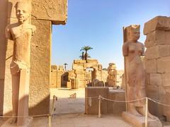 Luxor temple, Luxor, Egypt (cattan2011) Tags: ancientegypt ancient exploringtheegypt traveltuesday travelphotography travelphoto travelbloggers travel architecturephotography architecture sculpture landscapephotography landscape