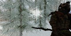 Krom the orc. (Eydis§Sunshine) Tags: firestorm secondlife fantasy elf orc secondlife:region=abandoned secondlife:parcel=emberlandingunderconstruction secondlife:x=87 secondlife:y=73 secondlife:z=3501 snow staff wildlife greenskin bear fur dd