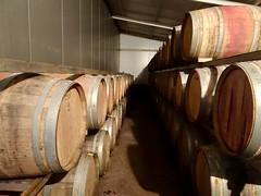 Valle de Uco Wineries - 18 (Bruno Rijsman) Tags: bruno tecla backpacking argentina valledeuco wine wineries winery mendoza