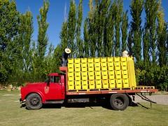 Valle de Uco Wineries - 13 (Bruno Rijsman) Tags: bruno tecla backpacking argentina valledeuco wine wineries winery mendoza
