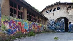 Snek Pyrata 1/2 (ostplp) Tags: exploration vintage ancien abandon abandonné électricité usine industriel industrie friche oublié forgotten decay urbex acierie steel mill graff graffiti tag