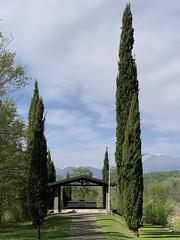 (Paolo Cozzarizza) Tags: italia friuliveneziagiulia pordenone castelnovodelfriuli scorcio cielo alberi monumento erba