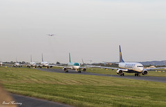 The Evening Rush (birrlad) Tags: dublin dub international airport ireland aircraft aviation airplane airplanes airline airliner airlines airways taxi taxiway takeoff departing departure runway evening ryanair aerlingus