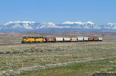 Desert Dandy (jamesbelmont) Tags: unionpacific potashlocal canecreeksubdivision klondikeflat moab arch emd gp40m2 gp60 potash railroad railway train locomotive lasalmountains