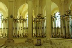 Abdij van Pontigny (herman hengelo) Tags: fence bourgondie abbayedepontigny bourgogne fancyfence smileonsaturday france