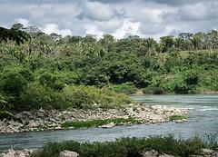 That's Guatemala. Frontera.Chiapas (Sonnie in Silver) Tags: mexico guatemala frontera usumacintariver border river chiapas