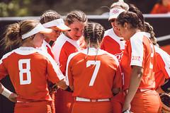 NCAA Softball vs. Tulsa (OSUAthletics) Tags: 2019 cowgirlsoftball cowgirls ncaa ncaaregional oklahomastateuniversity regional softball tulsa tulsagoldenhurricane universityoftulsa