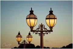 Anzac Day 2019 (cjhall.nz) Tags: memorial leastweforget fallensoldiers war aucklanddomain morning lamp streetlight dawnparade anzacday