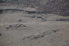 Kilauea Iki, Hawaii Volcanoes National Park, Hawaii (Roger Gerbig) Tags: kilaueaiki hawaiivolcanoesnationalpark kilauea volcano hawaii bigisland island rogergerbig canoneos5dmarkii canonef24105mmf4lisusm 2982
