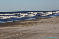 Outer Banks NC, Random No 2...My Very First Click...How Boring (Walt Snyder) Tags: canoneos5dmkiii canonef100400mmf4556l ocean shoreline outerbanks northcarolina beach waves whitecaps sand horizon