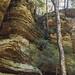 Cedar Falls_DSC1502