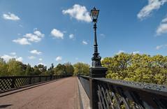 Armstrong Bridge, Jesmond, Newcastle upon Tyne (alisonhalliday) Tags: newcastleupontyne bridge trees sky lamp ornamentallamp canoneos77d canonefs1018mm