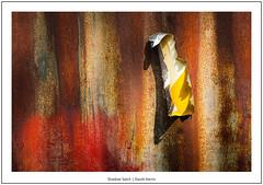 Shadow Spirit (David Harris ARPS) Tags: shadows focusstack laneend decay farmyard concept closeup photostyles rust plastic highwycombe england unitedkingdom