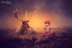 Let's be FRIENDS...😎😎😍😍 @nikonindiaofficial  #photography #photoshoot #lazerlenz #babypictures #babyphotoshoot  #bestbaby #babyphotography #love #bangalore #kids #baby #instababy #firstphoto #cute #picoftheday # (som.8174) Tags: love deer dad babymodel instababy happy cuteboy photomanipulation mom babyphotography cute boy babypictures beautiful toddler firstphoto cutebabies kids bangalore photoshop lazerlenz bestbaby babyboy beautifulbaby picoftheday baby babyphotoshoot photography photoshoot adorable